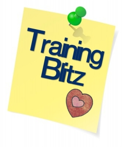 Planning a Training Blitz