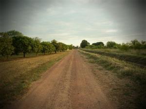 A Photo Walk:  Our Farm