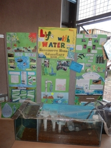 The prize winning display by the local Homeschool Network (co-op).  We've won 4 years in a row!