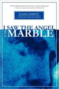 i-saw-the-angel-in-the-marble