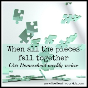 Our Weekly Review (lifestyle homeschool) 30-05-14