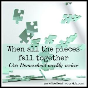 homeschool weekly review