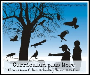Curriculum plus More