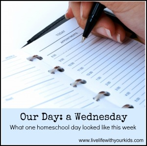 A day in the life of our Homeschool (August 2014)