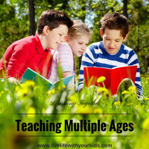 teaching multiple ages
